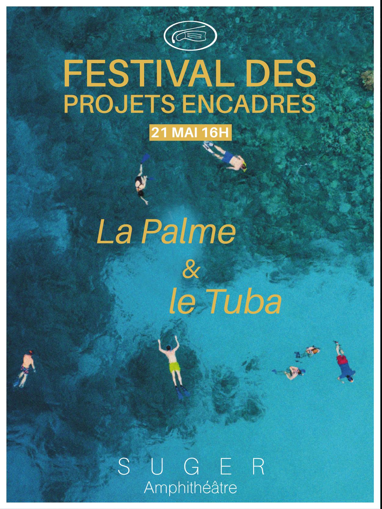 """Suivez le Festival des Projets Encadrés """"La Palme et du Tuba» des BTS Audiovisuel 2e année le Vendredi 21 mai 2021"""