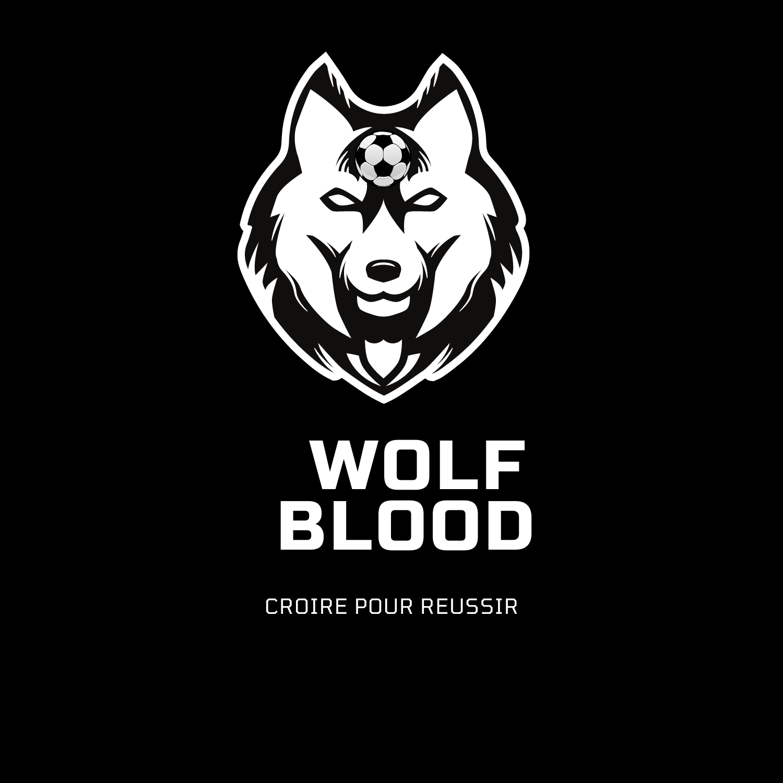 Wolfblood : la création d'une marque de sport par les 2nde 6
